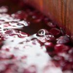 Podere Anima Mundi conferma la predilizione per vitigni toscani e purezza in bottiglia