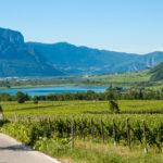Lago Di Garda: è la miglior destinazione del vino italiana 2019 secondo Wine Enthusiast
