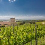 Villa a Sesta: un febbraio all'insegna dell'eccellenza