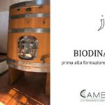 Biodinamica per professionisti del vino: prima alta formazione intensiva