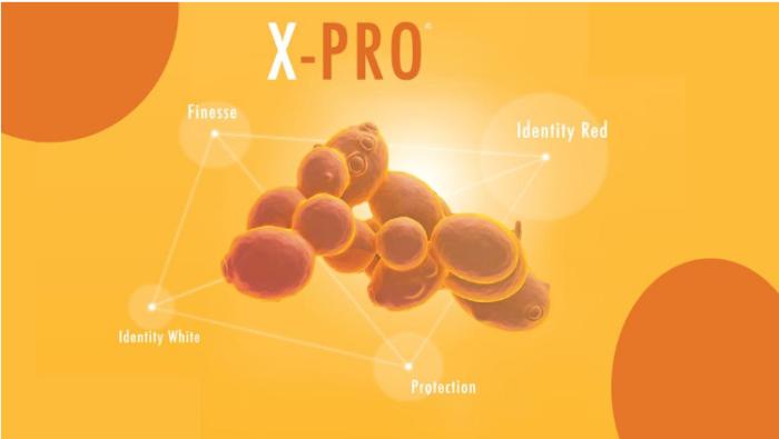 X-PRO®: Enologica VASON è innovazione naturale