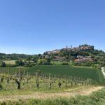 Winederlust, la start-up che porta alla scoperta delle cantine italiane
