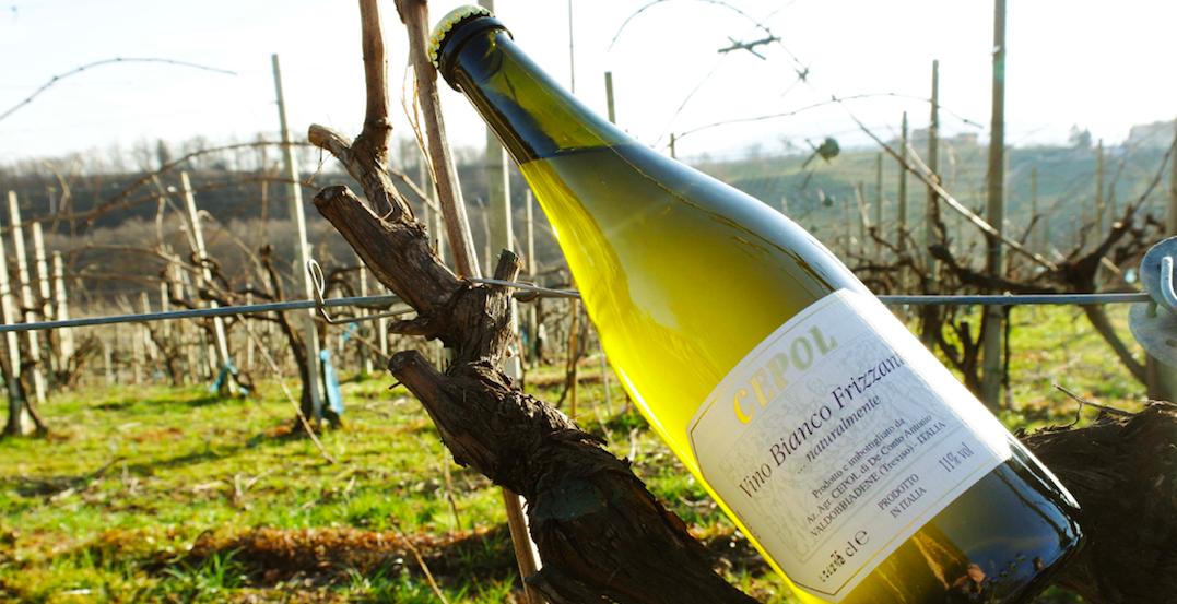 Azienda Agricola Cepol: il vino frizzante col fondo della tradizione