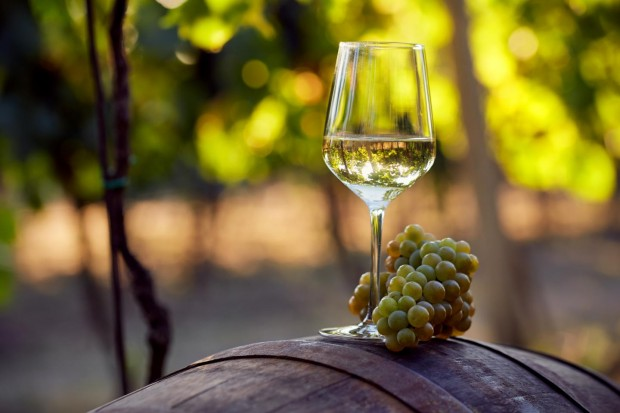 Dal 2020 l'Italia farà parte del Comitato Permanente sul Vino