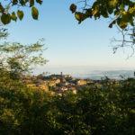 Consorzio del Vino Brunello di Montalcino: eletto il nuovo presidente