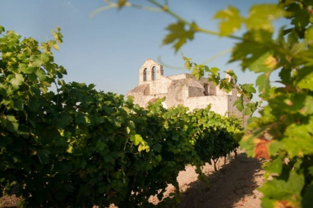 eventi degustazione vino puglia