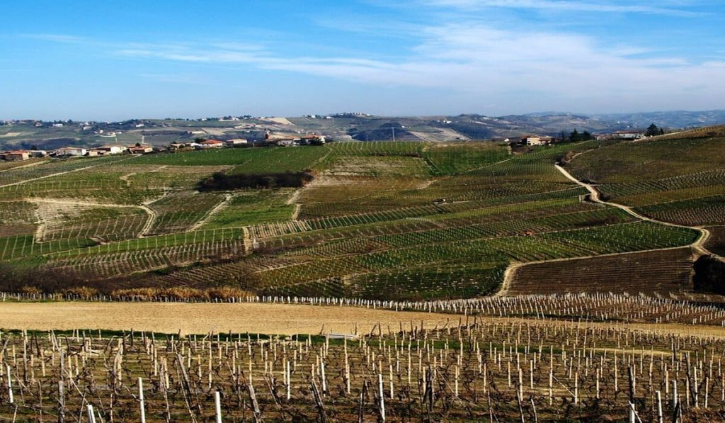 alba conferenza mondiale turismo del vino